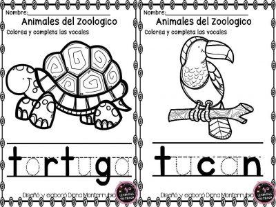 actividades-animales-de-zoologico-1