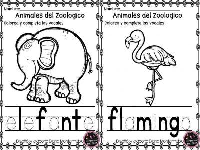 actividades-animales-de-zoologico-11