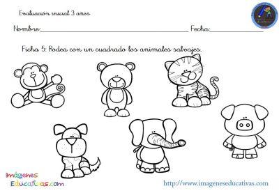 Evaluación inicial Educación Infantil 3 AÑOS (6)
