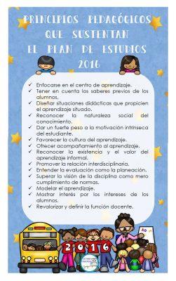 principios-pedagogicos-que-sustentan-el-plan-de-estudios-1