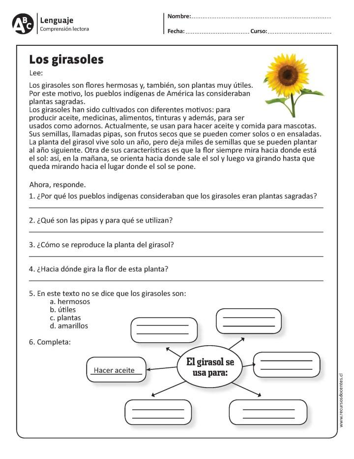40 Ejercicios De Comprensión Lectora Para Primaria Y Primer Grado Imagenes Educativas