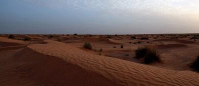 Paysage de sable autour de Ksar Ghilane - Tunisie 2012