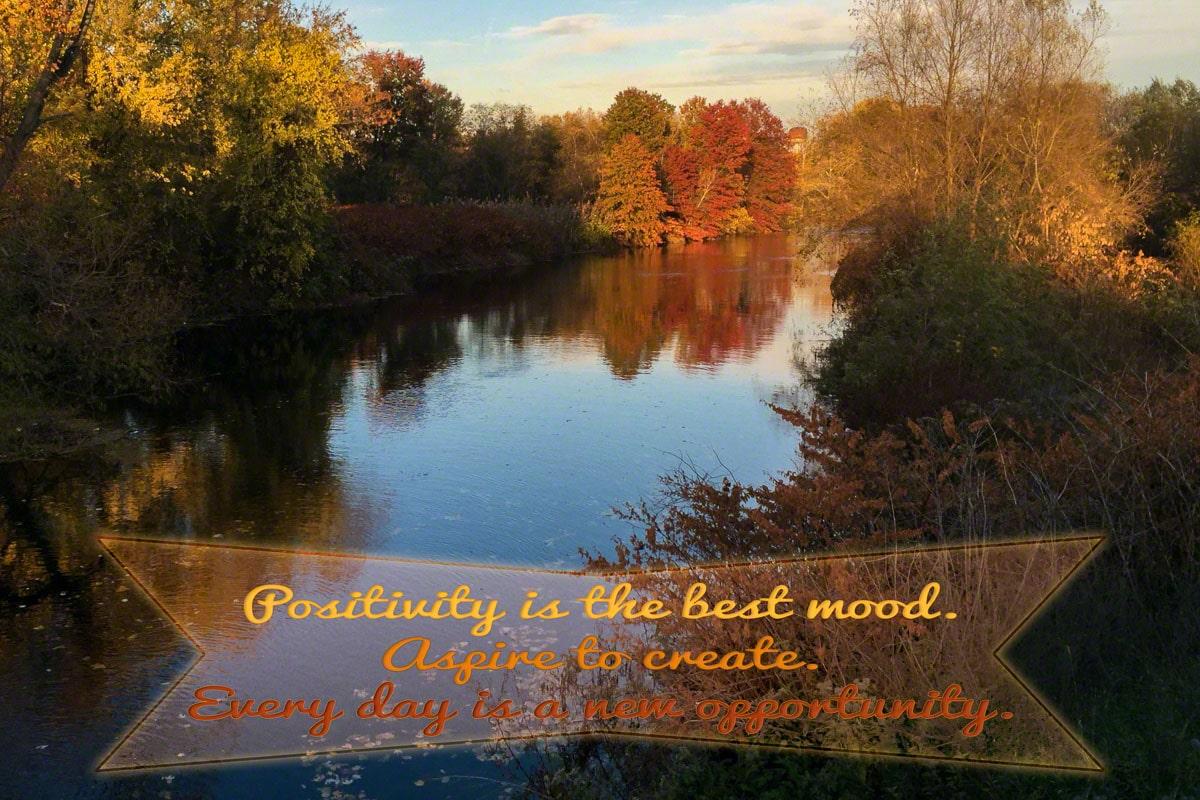Quote: Positivity & Creativity