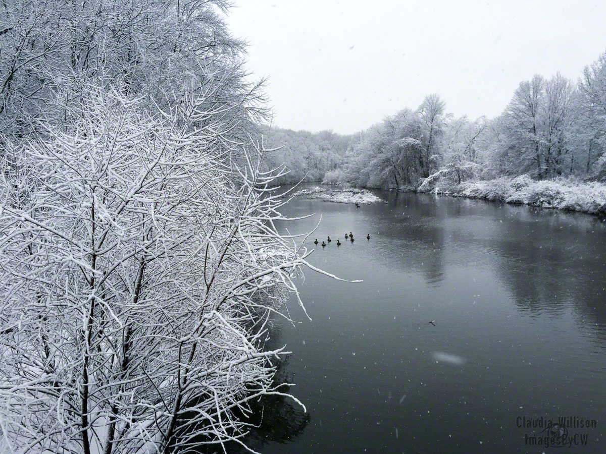 Whippany winter snow river