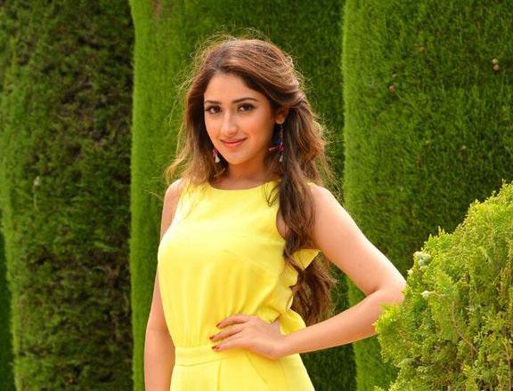 Sayesha-Saigal-Hot-Pics-in-Akhil-Debut-Movie