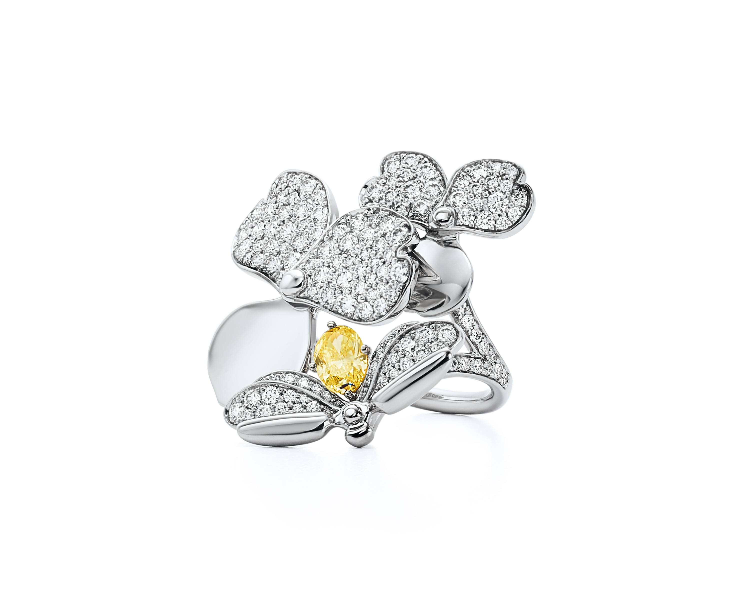 Tiffany Co Launches Flower Petal Inspired Collection Future Of