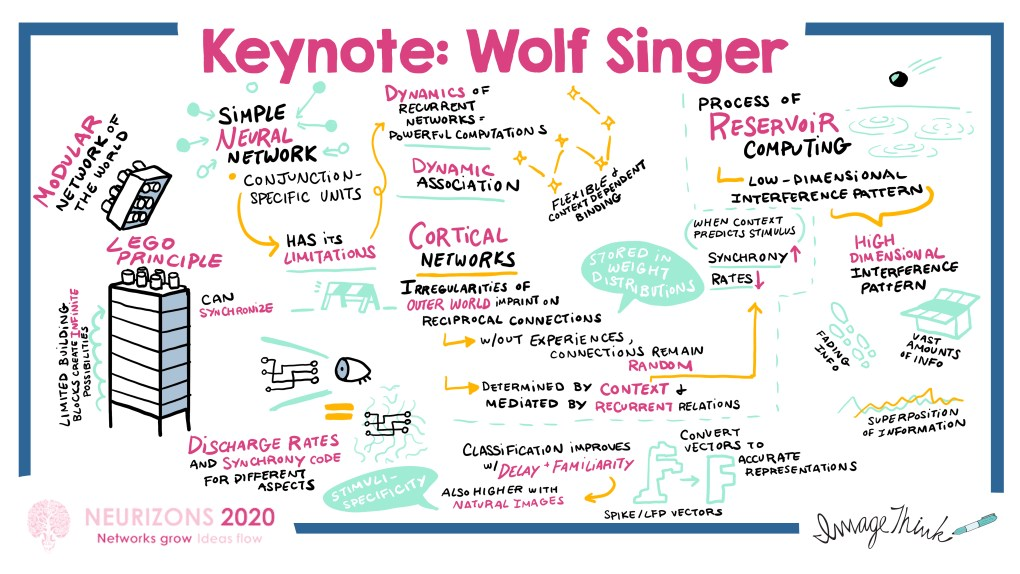ImageThink graphic recording of Keynote session with Wolf Singer at the Neurizons 2020 conference