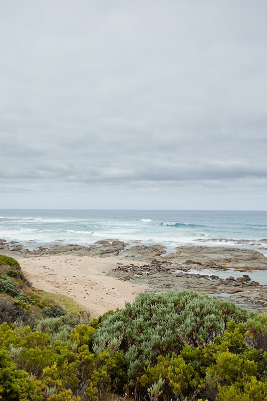 Crayfish Bay area, the Otways, Victoria Australia photography by Sharon Blance for Image Workshop