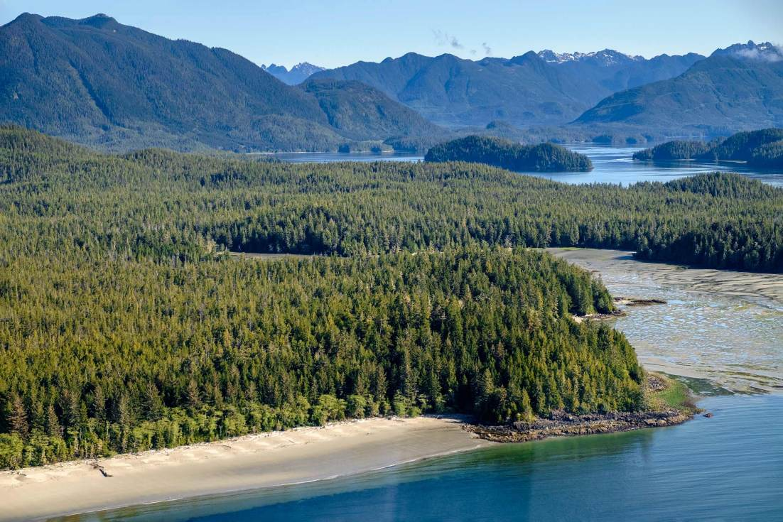 PWS015-0475-Sharon-Blance-photographer-Tofino-travel-editorial-clayoquot-sound-aerial-landscape