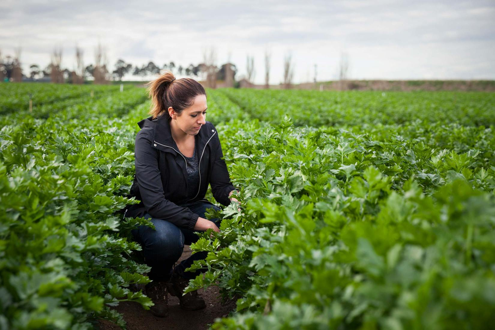 Vegetable biosecurity expert, Dr Jessica Lye