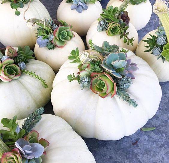 calabazas decoración otoño
