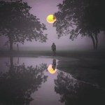 Purple tinted moon in nature scene