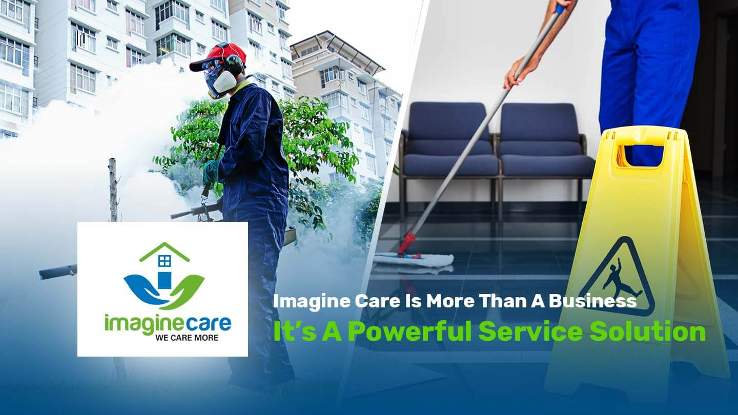 Imagine Care Cleaning & Pest Control   Trusted Experts In kenya