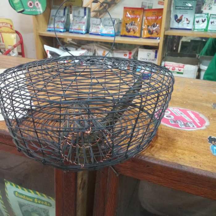 Mechanical rodent trap