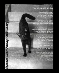 Melanistic Feline