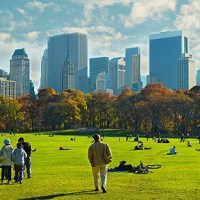 Les plus beaux jardins à New York