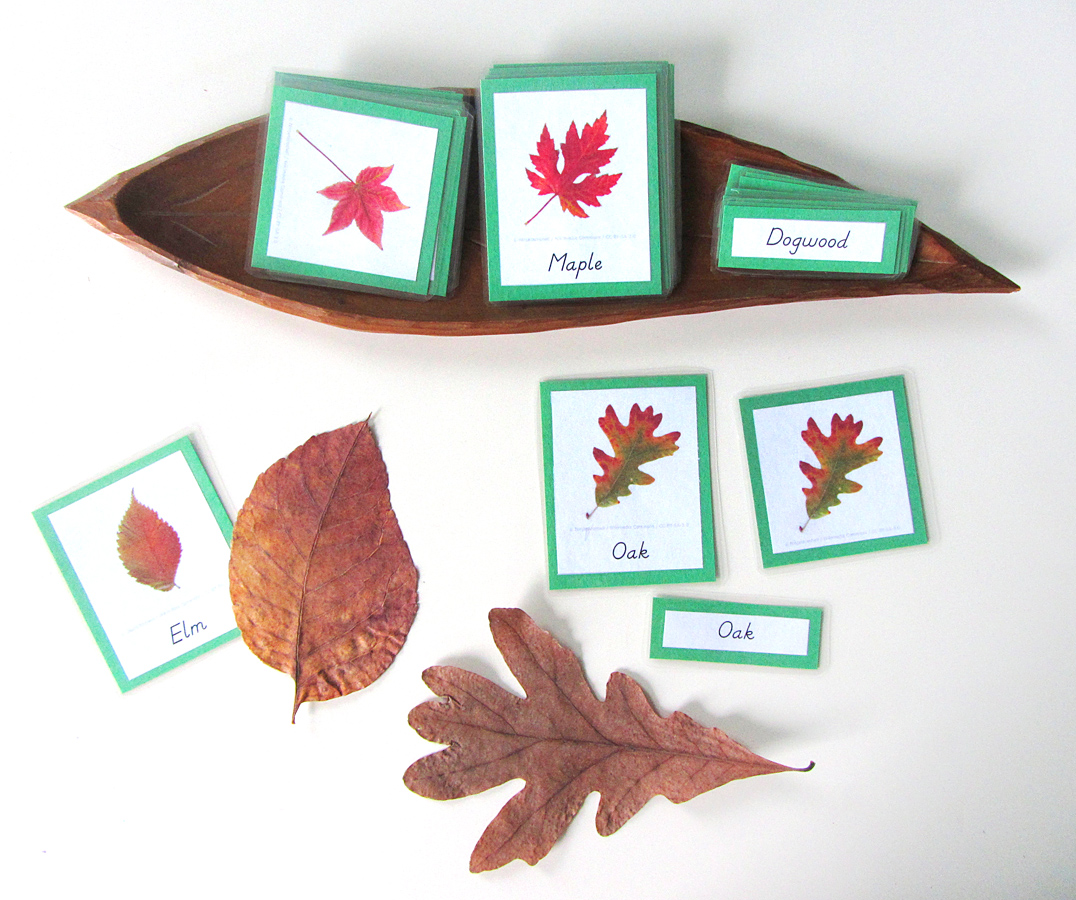 Autumn Leaves Quiet Book Amp Fall Homeschool Unit