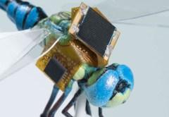 libellule drones cyborg