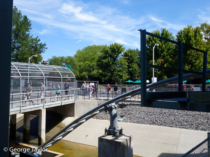 Kings-Dominion-roller-coasters-14