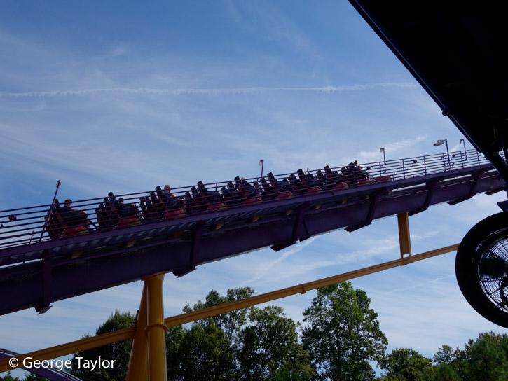 Busch-Gardens-Roller-Coasters-(3 of 18)