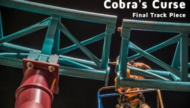 cobra's curse