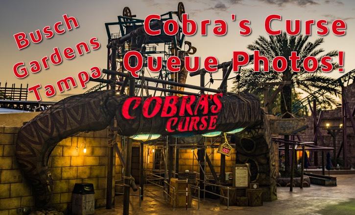 Cobra's Curse Queue Photos!