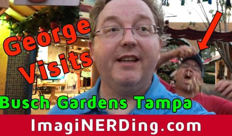 Busch gardens Tampa animals