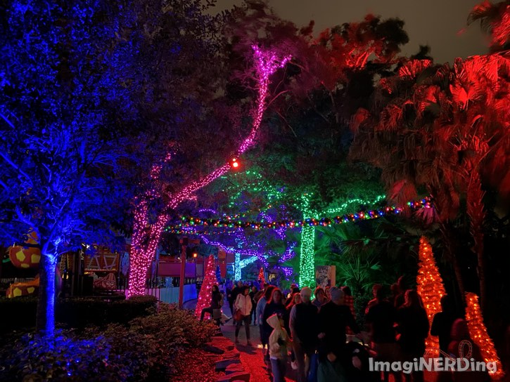 holiday lights in the trees at Busch Gardens Tampa 2019