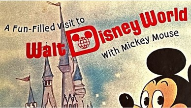 fun-filled visit to walt disney world with mickey mouse pop-up book