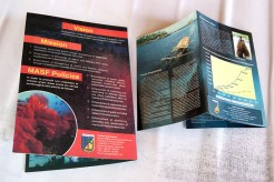 contoh layout brosur