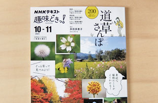 NHKテキスト | NHK出版