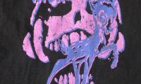 【デザインかっこいいTシャツ】POTSHOT×RISK