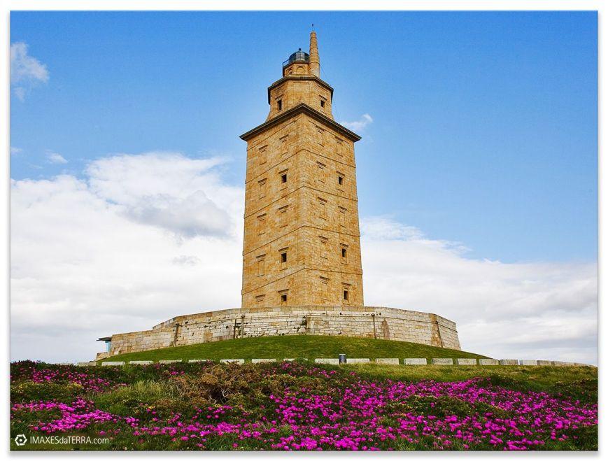 Torre de Hércules Comprar fotografía Faros de Galicia Torre de Hércules Océano Atlántico Primavera Flores Uñas de Gato Naturaleza Decoración