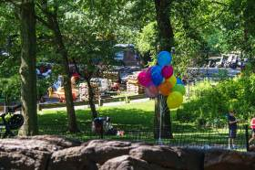 Sunday Morning - Balloons