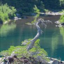 Rampart Lakes-2239
