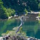 Rampart Lakes-2240