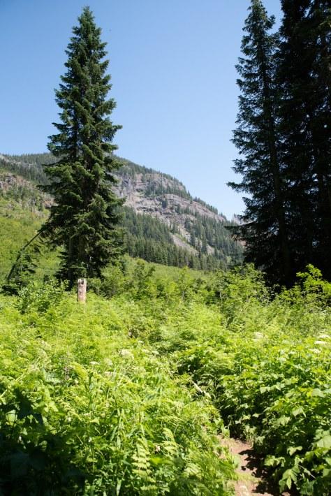 Rampart Lakes-2299