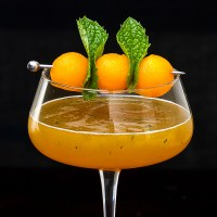 Cantaloupe Martini with Ginger and Mint