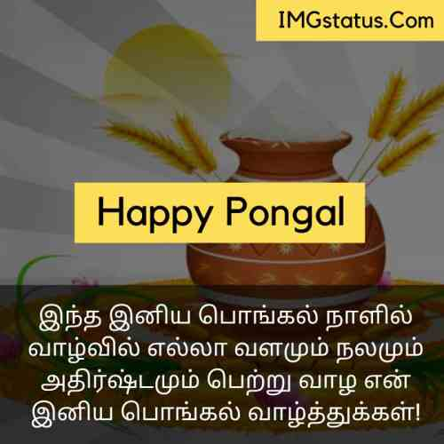 Happy Pongal Wishes in tamil Images