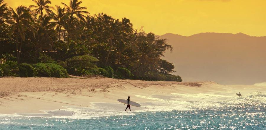 North Shore Oahu Surf Tour