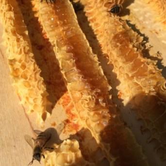 Maar wel honing onder de dekplank