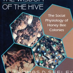 Thomas D. Seeley - The Wisdom of the Hive