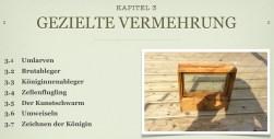Hochzeitsmanagment_für_Bienen_Kapitel3
