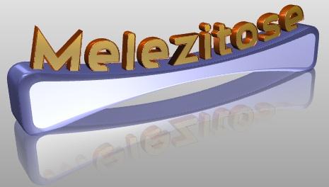 Melezitose. Zementhonig ein Schrecken für den Imker wird zum Segen bei kluger Verwendung und Vermarktung.