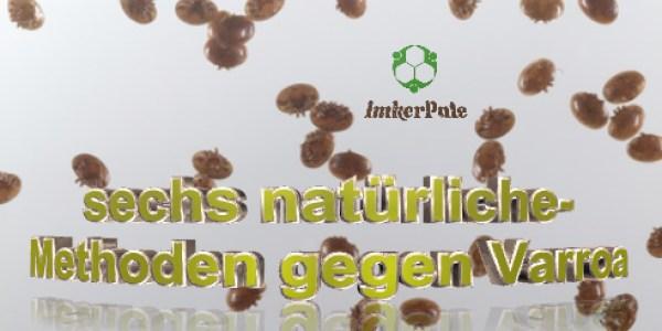 natürliche Methoden gegen Varroa, natürliche Varroabekämpfung, Varroabekämpfung ohne Chemie, Varroabekaempfung biologisch