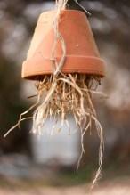 Insektenhotel einfach selber machen, einfach selber bauen