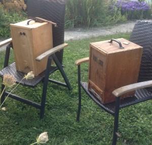 Bienenschwarm im September in Schwarmkisten