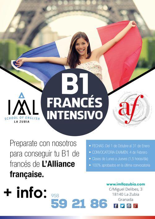 grupos de francés B1 intensivos