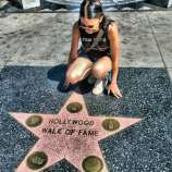 walk of fame - hollywood