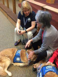 comfort dogs immanuel lutheran church joplin missouri